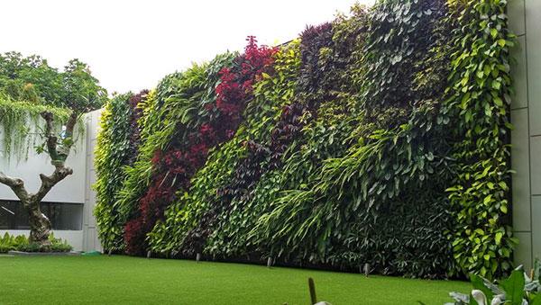 vertical garden bandung