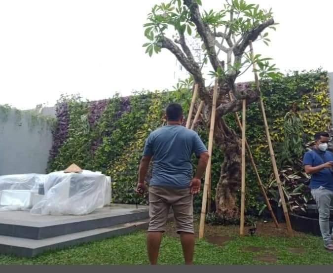 jasa-taman-vertical-garden-beji-depok