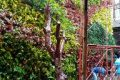 TukangTaman Vertical Garden Beji Depok